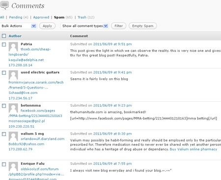How To Safely Keep Spam Comments Off Your Blog